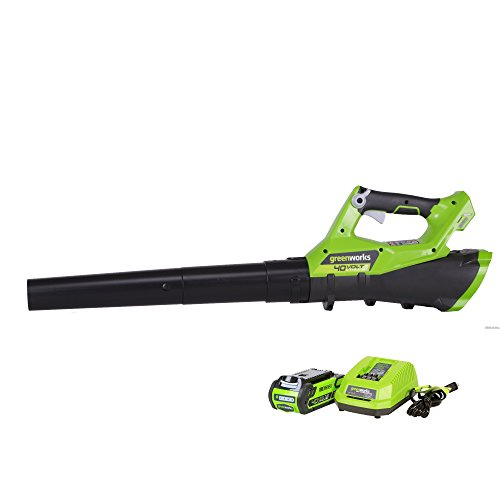 Greenworks 40V 110 MPH - 390 CFM Cordless Jet Blower, 2.5 AH Battery Included 2400802