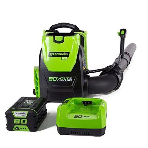 Greenworks 80V 145MPH - 580CFM Cordless Backpack Leaf Blower, 2.5Ah Battery and Charger Included BPB80L2510